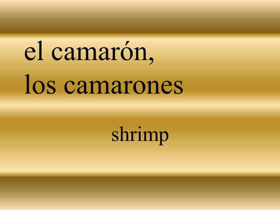 el camarón, los camarones shrimp