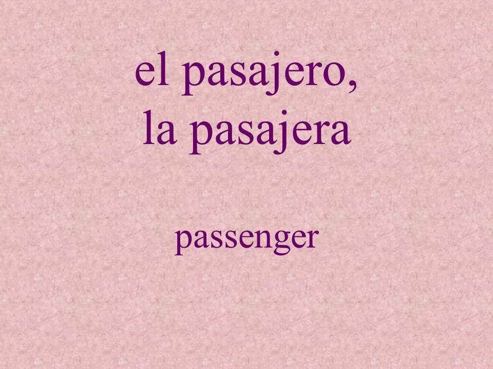 el pasajero, la pasajera passenger