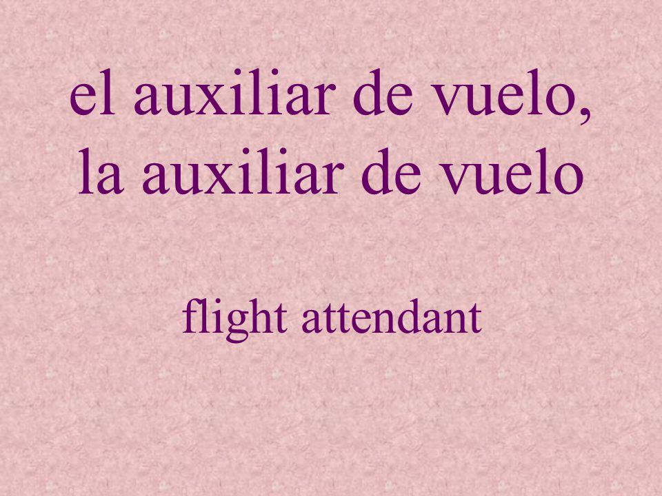 el auxiliar de vuelo, la auxiliar de vuelo flight attendant