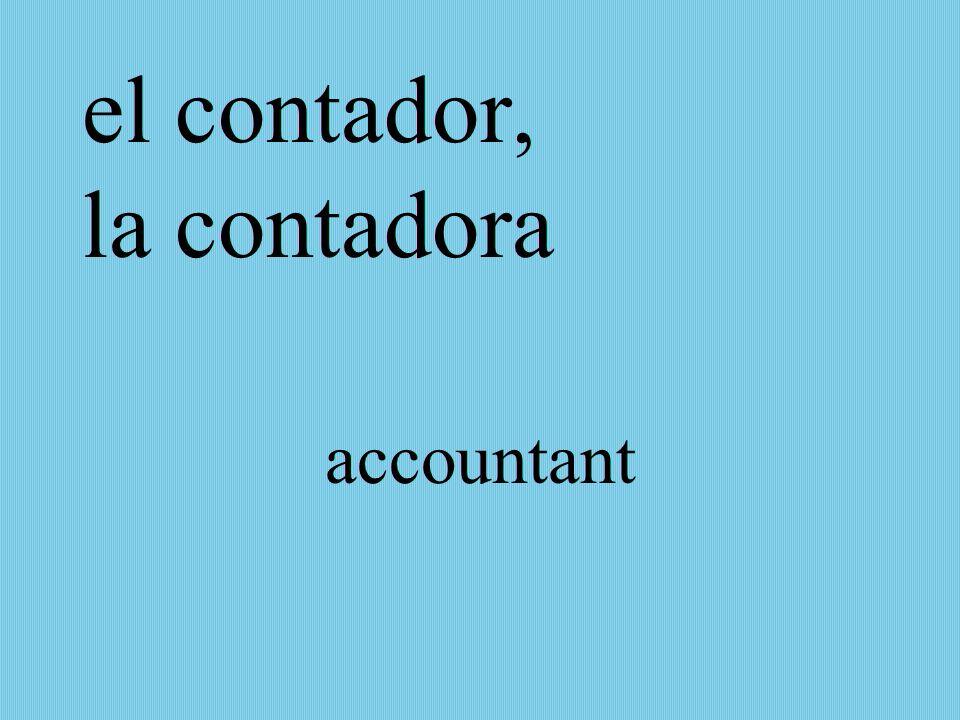 el contador, la contadora accountant