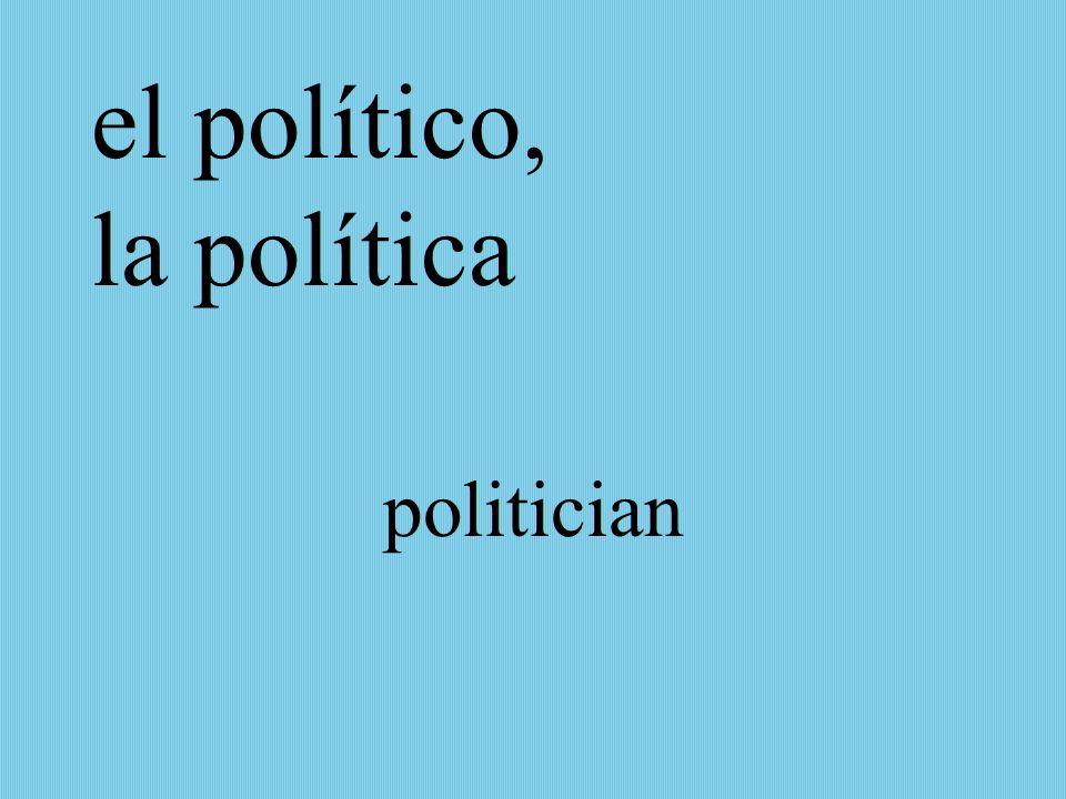 el político, la política politician