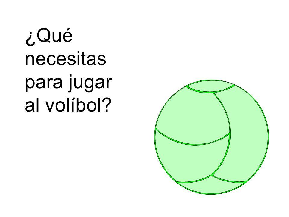 ¿Qué necesitas para jugar al volíbol?