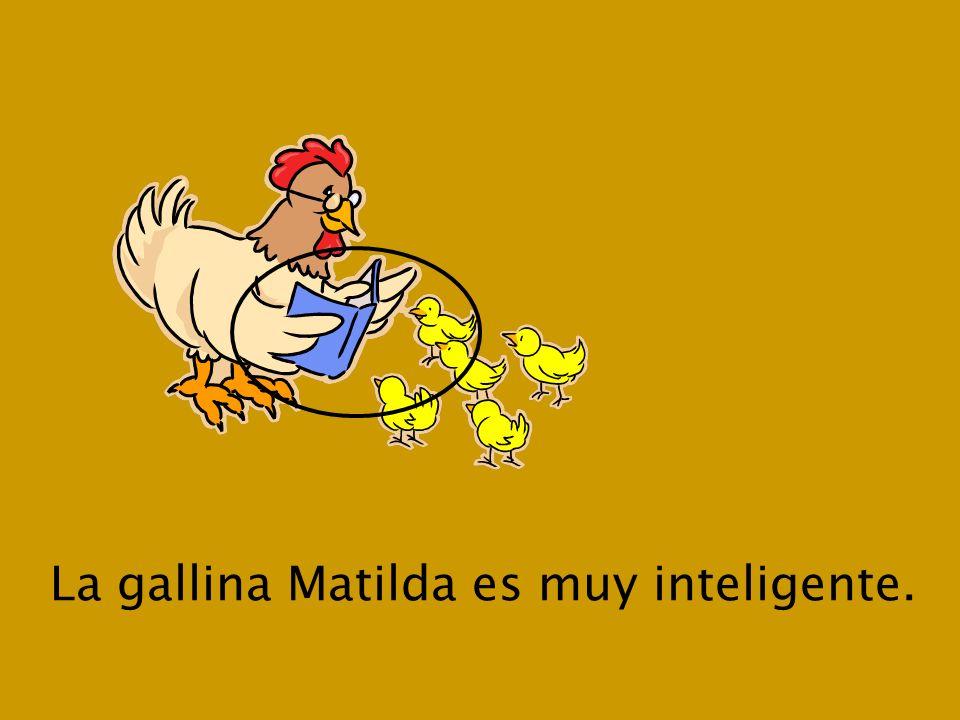 Luis dice: Matilda no me gusta el Día de Acción de Gracias. ¡Es un día muy malo para los pavos!