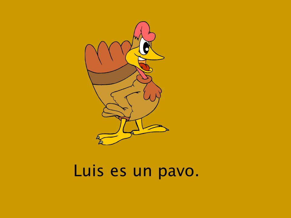 Luis es un pavo.