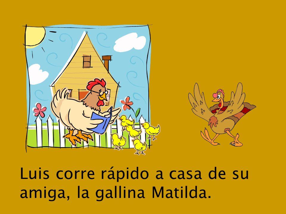 Luis corre rápido a casa de su amiga, la gallina Matilda.