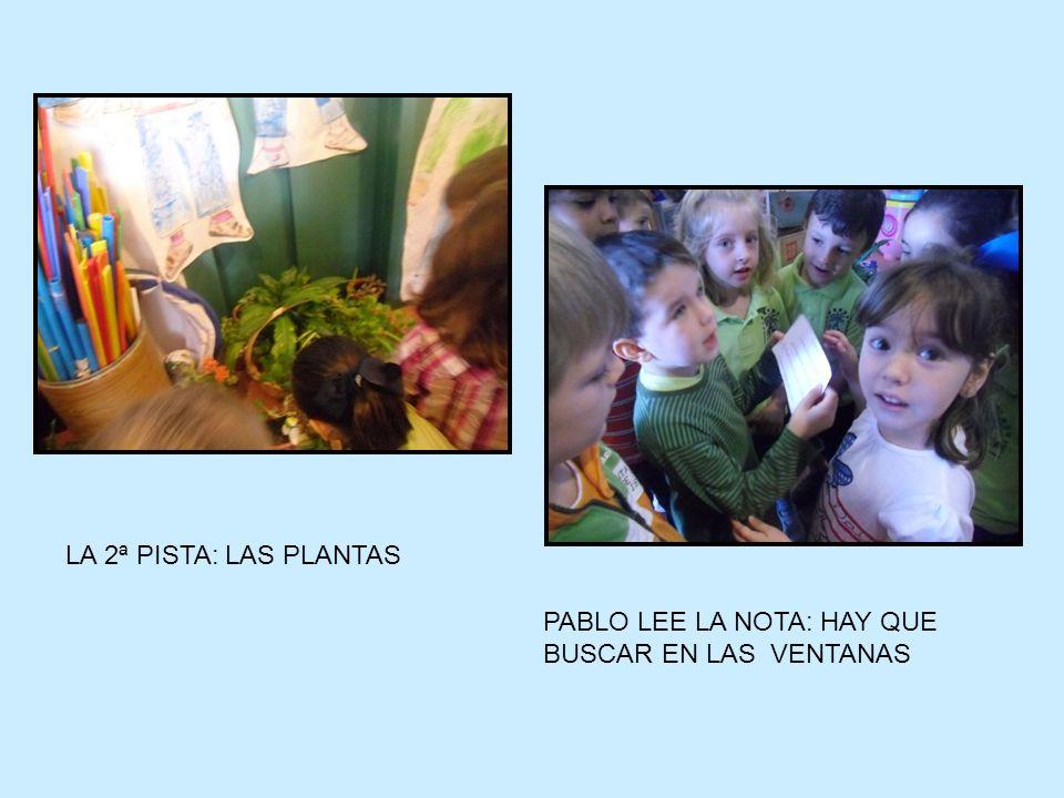 LA 2ª PISTA: LAS PLANTAS PABLO LEE LA NOTA: HAY QUE BUSCAR EN LAS VENTANAS