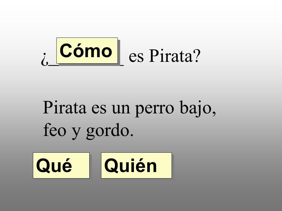 ¿________ es Pirata? Pirata es un perro bajo, feo y gordo. Quién Qué Cómo