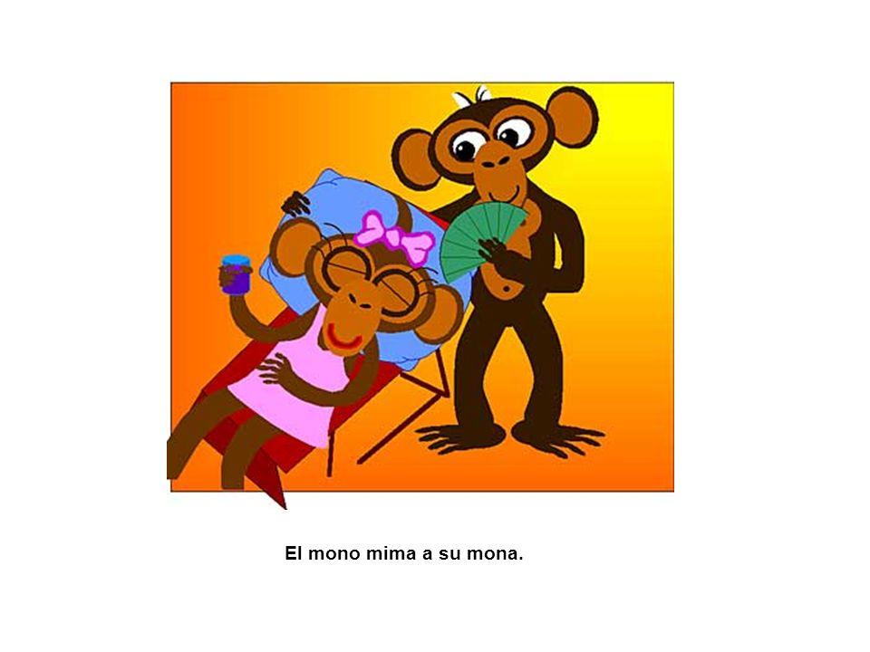 El mono mima a su mona.