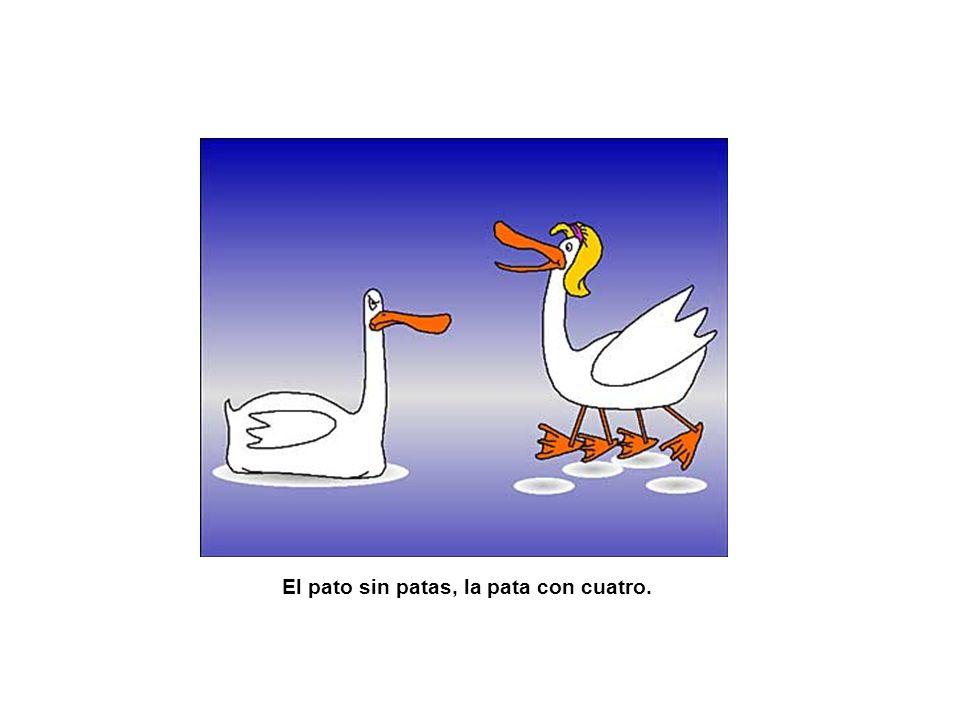 El pato sin patas, la pata con cuatro.