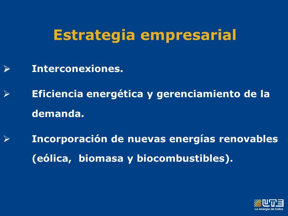 Estrategia empresarial Interconexiones. Eficiencia energética y gerenciamiento de la demanda.