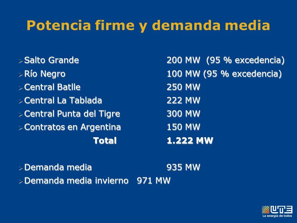 Potencia firme y demanda media Salto Grande200 MW (95 % excedencia) Salto Grande200 MW (95 % excedencia) Río Negro100 MW (95 % excedencia) Río Negro100 MW (95 % excedencia) Central Batlle250 MW Central Batlle250 MW Central La Tablada222 MW Central La Tablada222 MW Central Punta del Tigre300 MW Central Punta del Tigre300 MW Contratos en Argentina150 MW Contratos en Argentina150 MW Total1.222 MW Total1.222 MW Demanda media935 MW Demanda media935 MW Demanda media invierno971 MW Demanda media invierno971 MW