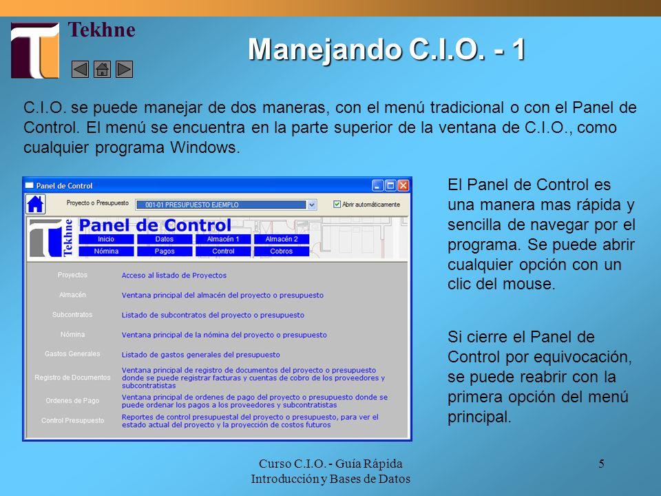 Curso C.I.O. - Guía Rápida Introducción y Bases de Datos 5 Manejando C.I.O. - 1 El Panel de Control es una manera mas rápida y sencilla de navegar por