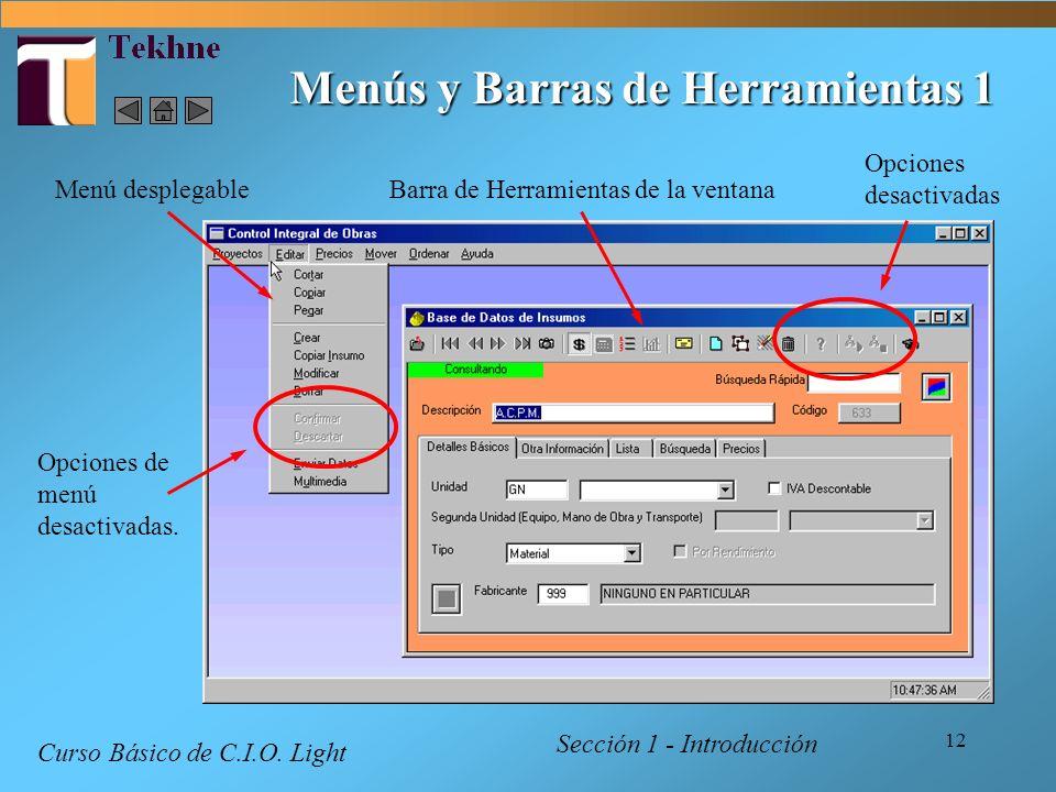 12 Menús y Barras de Herramientas 1 Sección 1 - Introducción Curso Básico de C.I.O. Light Menú desplegableBarra de Herramientas de la ventana Opciones