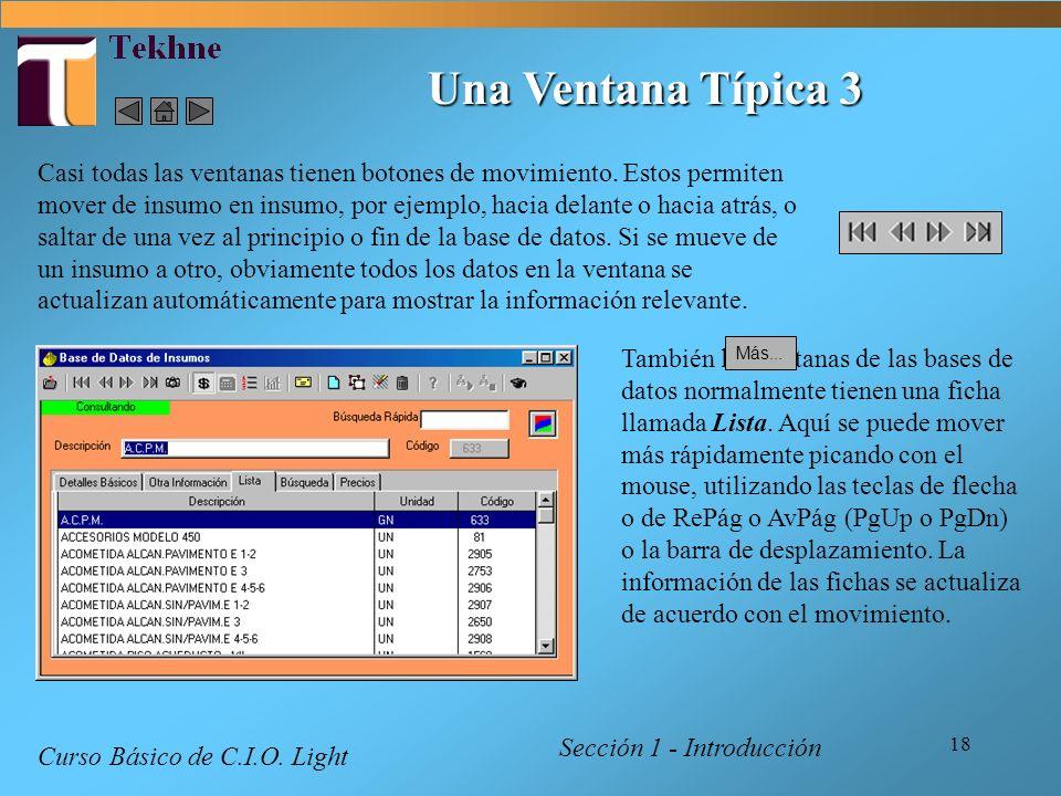 18 Una Ventana Típica 3 Sección 1 - Introducción Curso Básico de C.I.O. Light También las ventanas de las bases de datos normalmente tienen una ficha