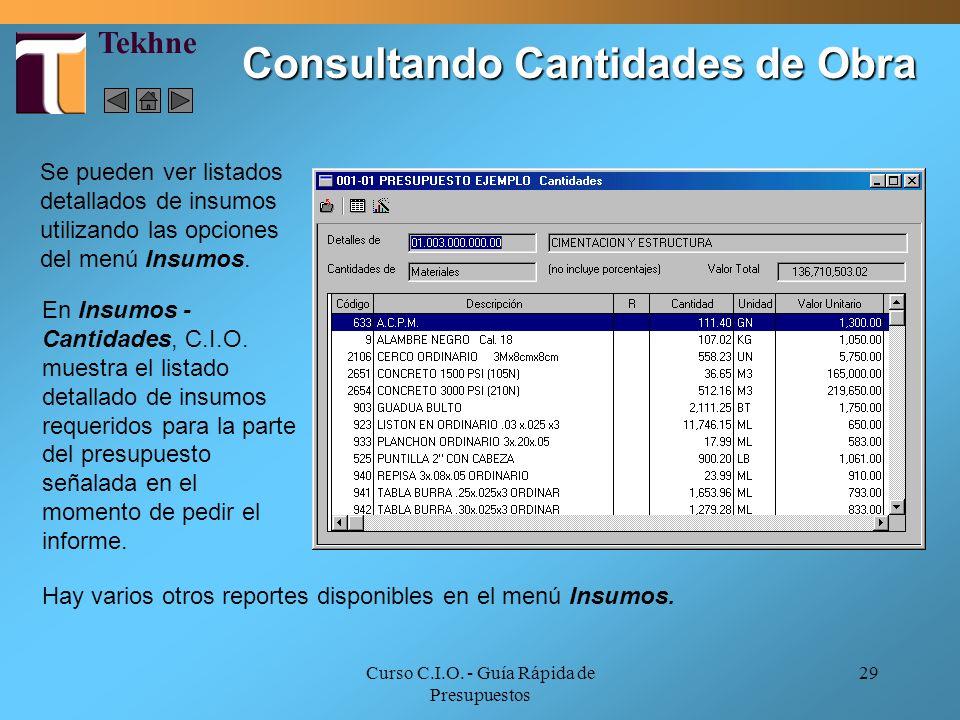 Curso C.I.O. - Guía Rápida de Presupuestos 29 Consultando Cantidades de Obra Se pueden ver listados detallados de insumos utilizando las opciones del