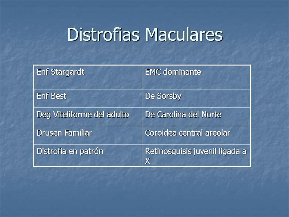 Retinosquisis congénita Se presenta entre 5 y 10 años como dificultad para lectura Se presenta entre 5 y 10 años como dificultad para lectura En <5 años como desviaciones oculares o nistagmus ( retinosquisis avanzada con hemorragia vítrea) En <5 años como desviaciones oculares o nistagmus ( retinosquisis avanzada con hemorragia vítrea) Maculopatía, es universal Maculopatía, es universal Squisis foveal: pequeños espacios cistoides en patrón de rueda de bicicleta o radiado Squisis foveal: pequeños espacios cistoides en patrón de rueda de bicicleta o radiado