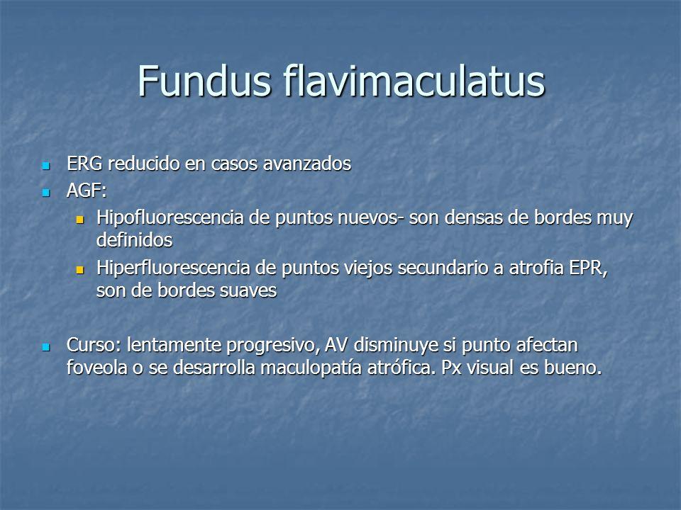 Fundus flavimaculatus ERG reducido en casos avanzados ERG reducido en casos avanzados AGF: AGF: Hipofluorescencia de puntos nuevos- son densas de bord