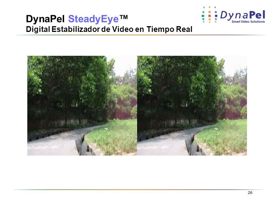 Smart Video Solutions 26 DynaPel SteadyEye Digital Estabilizador de Video en Tiempo Real