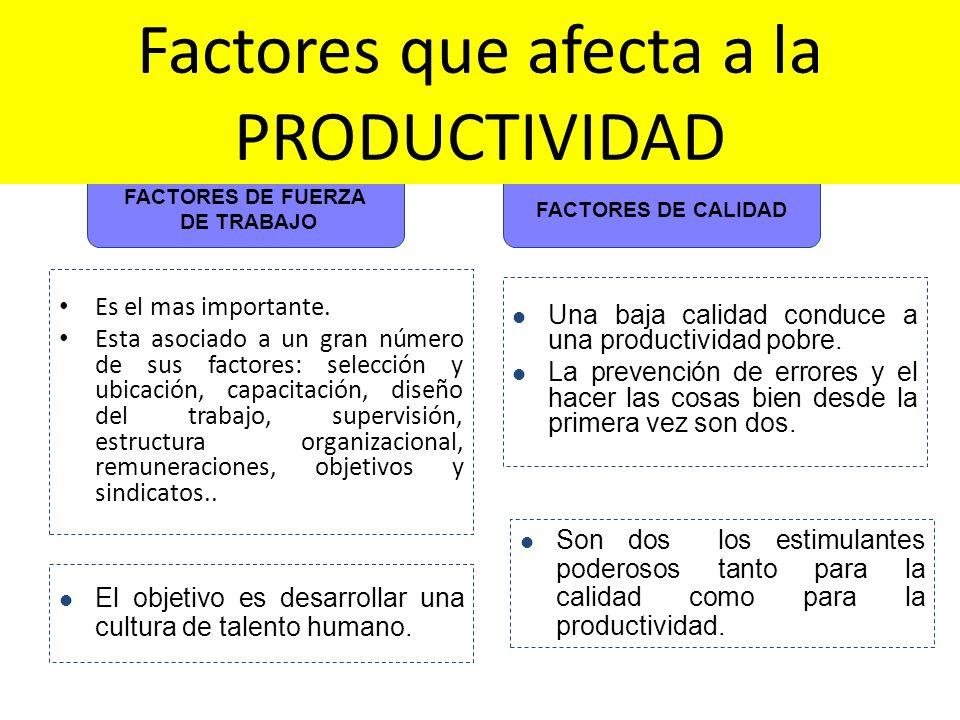 Es el mas importante. Esta asociado a un gran número de sus factores: selección y ubicación, capacitación, diseño del trabajo, supervisión, estructura