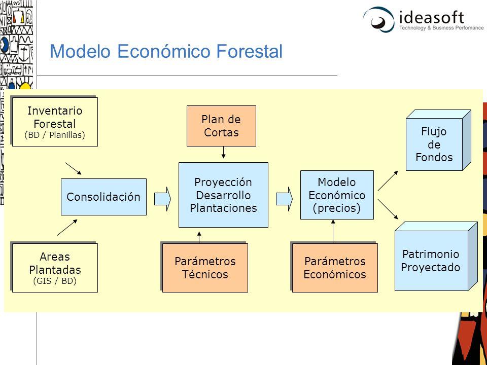 28 Modelo Económico Forestal Inventario Forestal (BD / Planillas) Areas Plantadas (GIS / BD) Consolidación Proyección Desarrollo Plantaciones Parámetr
