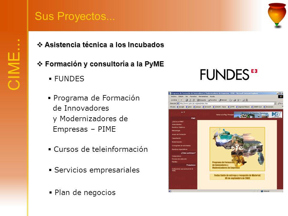 CIME... Sus Proyectos... Asistencia técnica a los Incubados Asistencia técnica a los Incubados Formación y consultoría a la PyME Formación y consultor