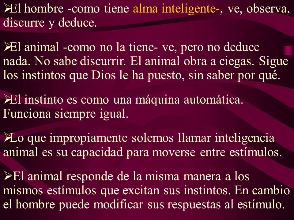El hombre -como tiene alma inteligente-, ve, observa, discurre y deduce.