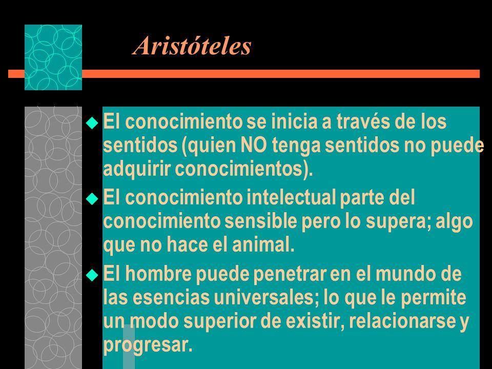 Aristóteles El conocimiento se inicia a través de los sentidos (quien NO tenga sentidos no puede adquirir conocimientos). El conocimiento intelectual