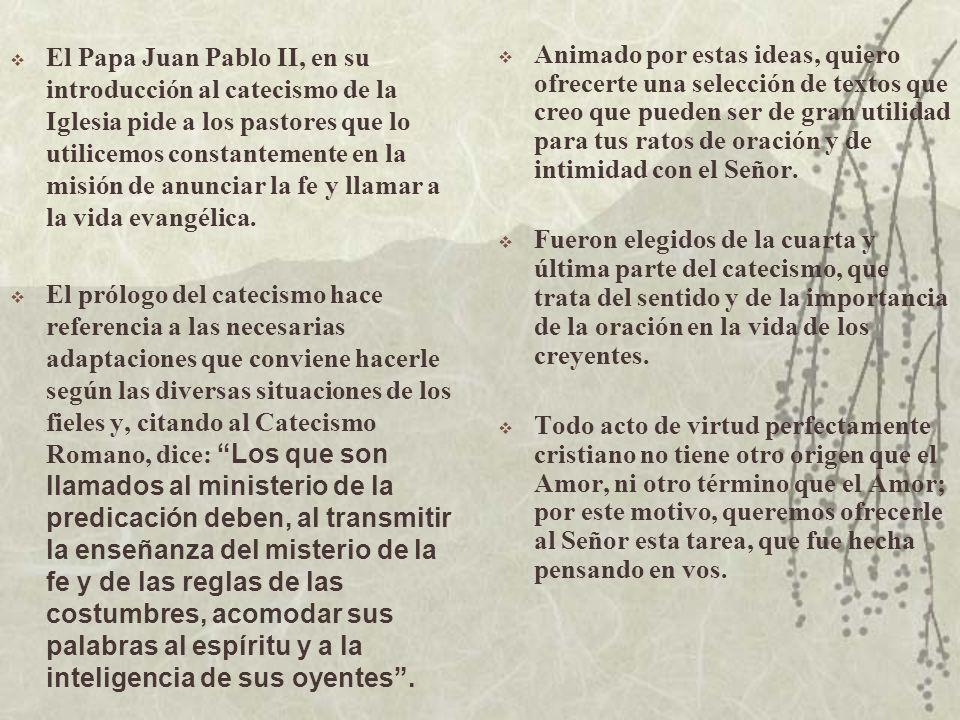 El Papa Juan Pablo II, en su introducción al catecismo de la Iglesia pide a los pastores que lo utilicemos constantemente en la misión de anunciar la