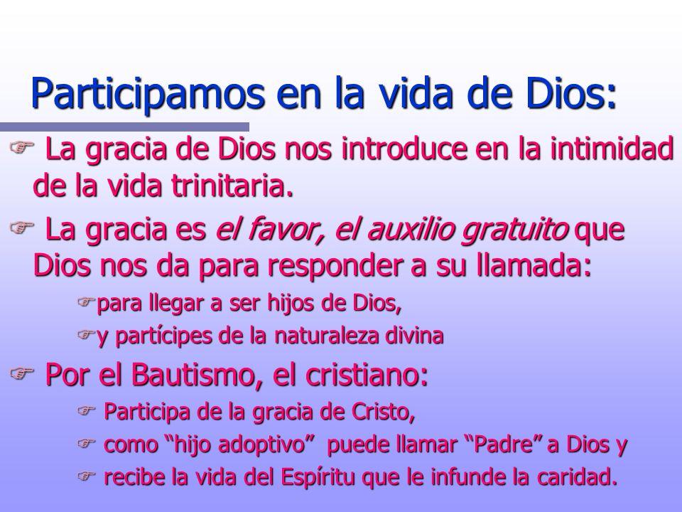 Participamos en la vida de Dios: F La gracia de Dios nos introduce en la intimidad de la vida trinitaria. F La gracia es el favor, el auxilio gratuito