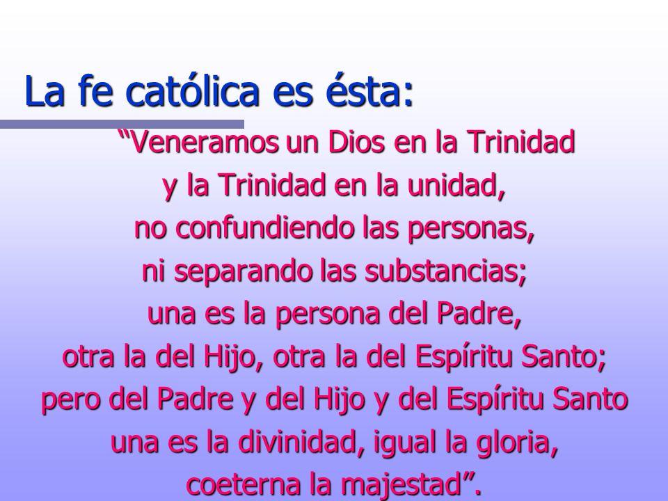 La fe católica es ésta: Veneramos un Dios en la Trinidad y la Trinidad en la unidad, no confundiendo las personas, ni separando las substancias; una e