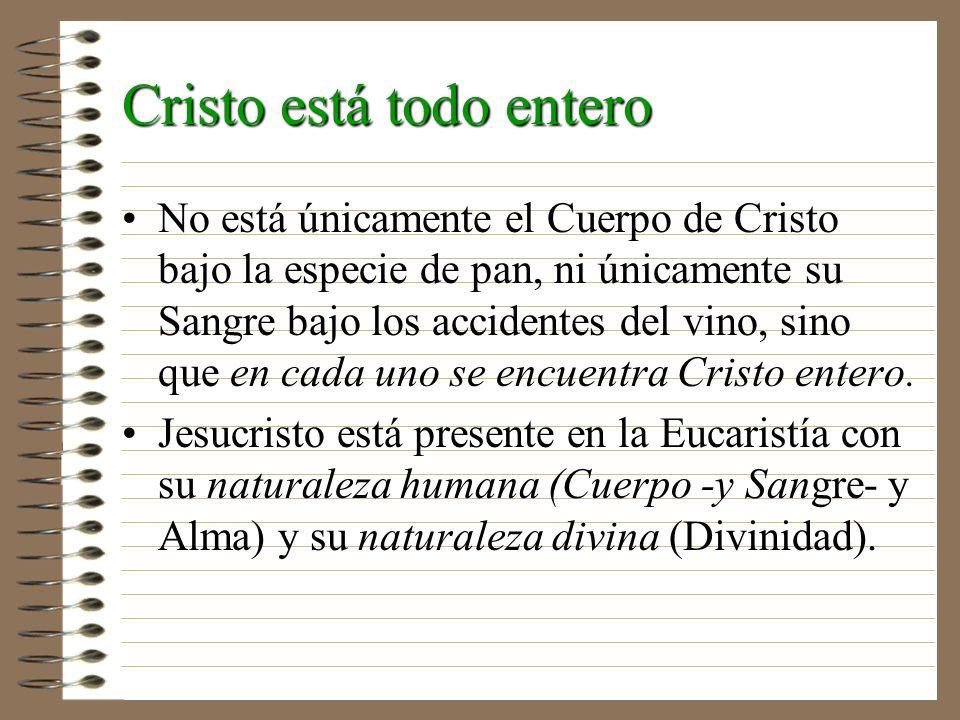 Cristo está todo entero No está únicamente el Cuerpo de Cristo bajo la especie de pan, ni únicamente su Sangre bajo los accidentes del vino, sino que