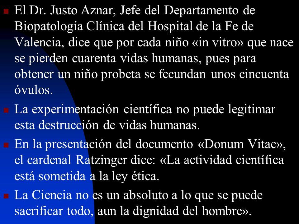 El Dr. Justo Aznar, Jefe del Departamento de Biopatología Clínica del Hospital de la Fe de Valencia, dice que por cada niño «in vitro» que nace se pie