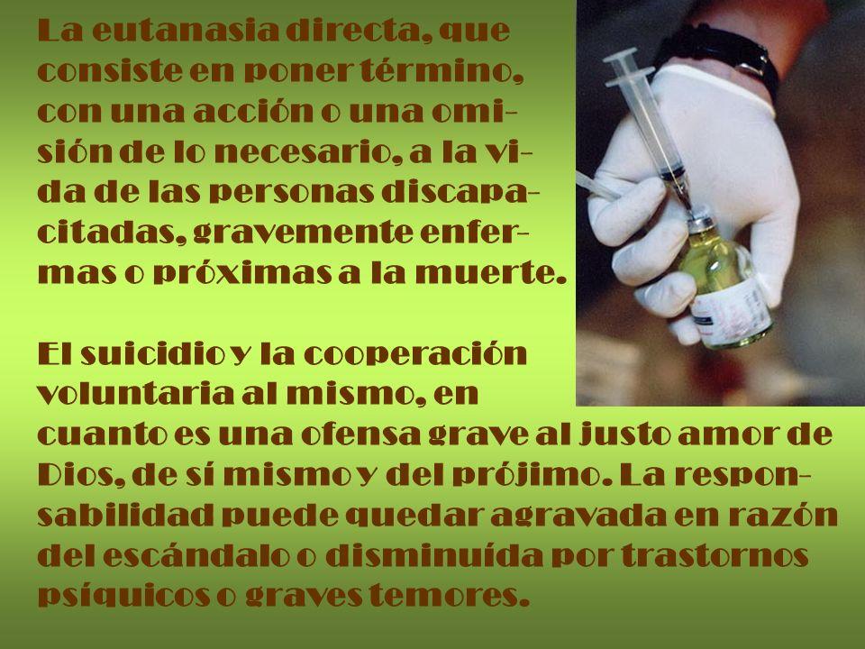 La eutanasia directa, que consiste en poner término, con una acción o una omi- sión de lo necesario, a la vi- da de las personas discapa- citadas, gra