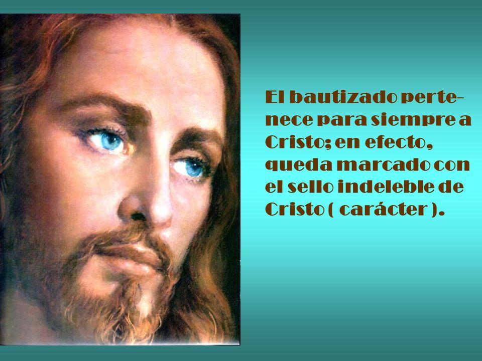 El bautizado perte- nece para siempre a Cristo; en efecto, queda marcado con el sello indeleble de Cristo ( carácter ).