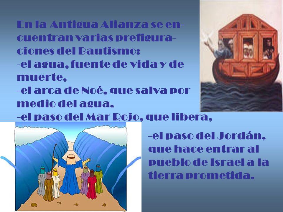 En la Antigua Alianza se en- cuentran varias prefigura- ciones del Bautismo: -el agua, fuente de vida y de muerte, -el arca de Noé, que salva por medi