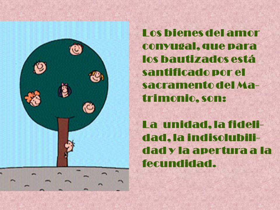 Los bienes del amor conyugal, que para los bautizados está santificado por el sacramento del Ma- trimonio, son: La unidad, la fideli- dad, la indisolu