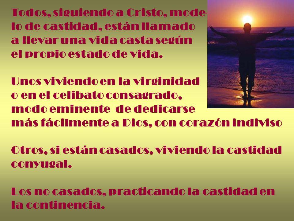 Todos, siguiendo a Cristo, mode- lo de castidad, están llamado a llevar una vida casta según el propio estado de vida. Unos viviendo en la virginidad