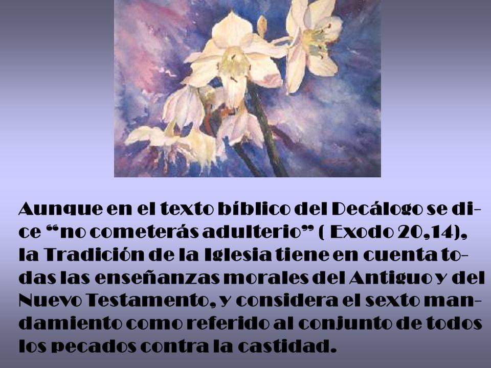 Aunque en el texto bíblico del Decálogo se di- ce no cometerás adulterio ( Exodo 20,14), la Tradición de la Iglesia tiene en cuenta to- das las enseña