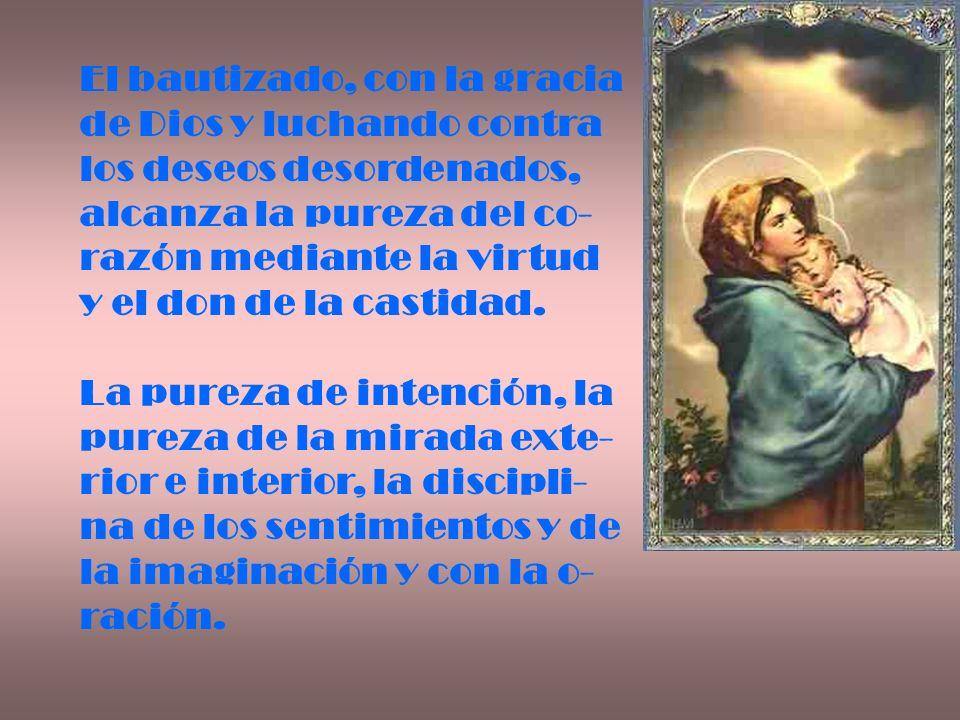 El bautizado, con la gracia de Dios y luchando contra los deseos desordenados, alcanza la pureza del co- razón mediante la virtud y el don de la casti