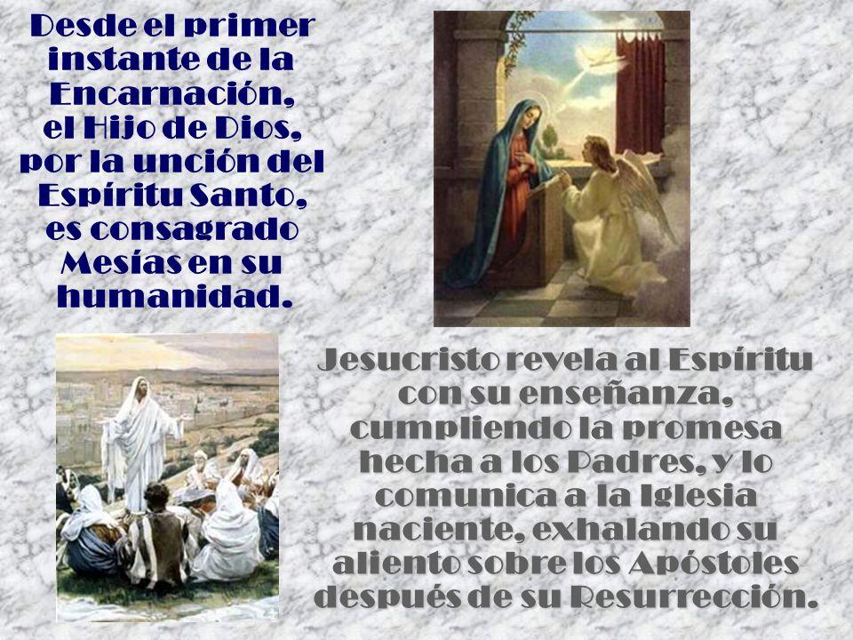 Desde el primer instante de la Encarnación, el Hijo de Dios, por la unción del Espíritu Santo, es consagrado Mesías en su humanidad. Jesucristo revela