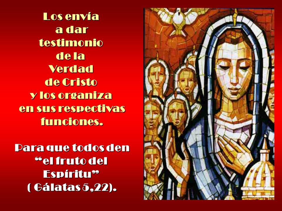 Los envía a dar testimonio de la Verdad de Cristo y los organiza en sus respectivas funciones. Para que todos den el fruto del Espíritu ( Gálatas 5,22