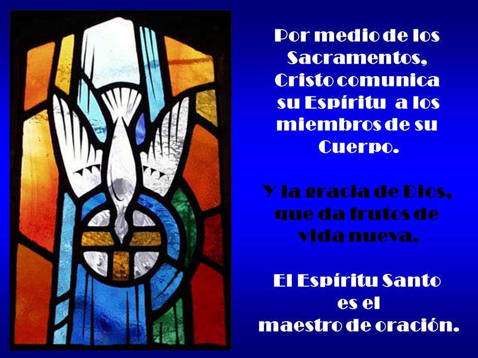 Por medio de los Sacramentos, Cristo comunica su Espíritu a los miembros de su Cuerpo. Y la gracia de Dios, que da frutos de vida nueva. El Espíritu S
