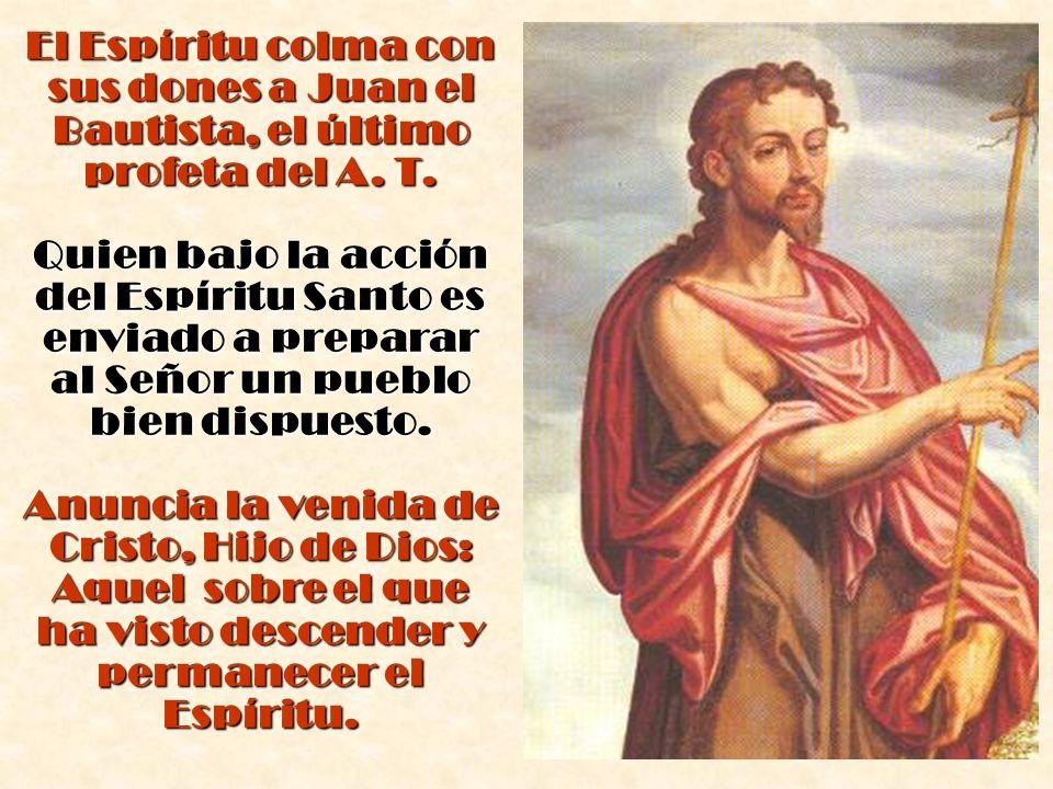 El Espíritu colma con sus dones a Juan el Bautista, el último profeta del A. T. Quien bajo la acción del Espíritu Santo es enviado a preparar al Señor