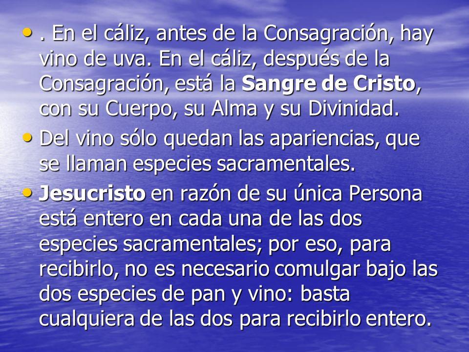 . En el cáliz, antes de la Consagración, hay vino de uva. En el cáliz, después de la Consagración, está la Sangre de Cristo, con su Cuerpo, su Alma y