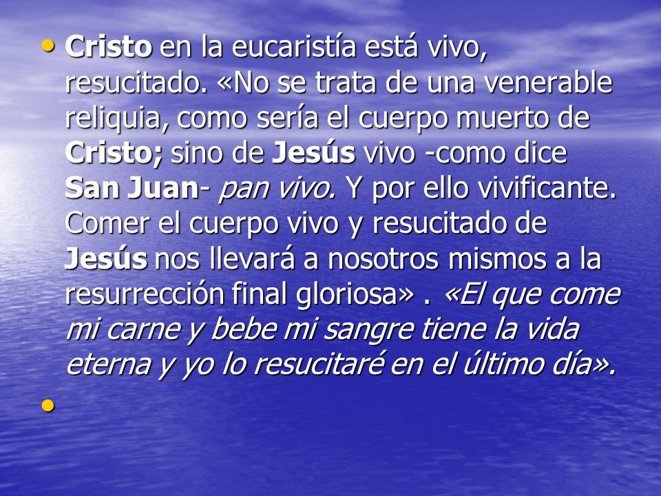Cristo en la eucaristía está vivo, resucitado. «No se trata de una venerable reliquia, como sería el cuerpo muerto de Cristo; sino de Jesús vivo -como