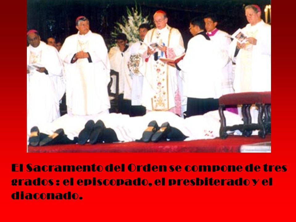 El Sacramento del Orden se compone de tres grados : el episcopado, el presbiterado y el diaconado.