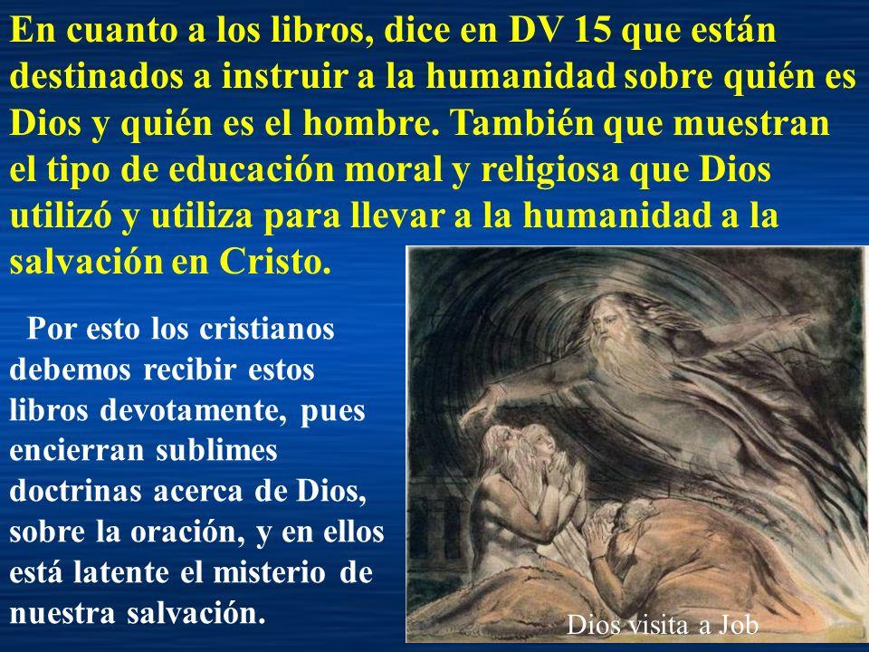 Dios visita a Job En cuanto a los libros, dice en DV 15 que están destinados a instruir a la humanidad sobre quién es Dios y quién es el hombre. Tambi