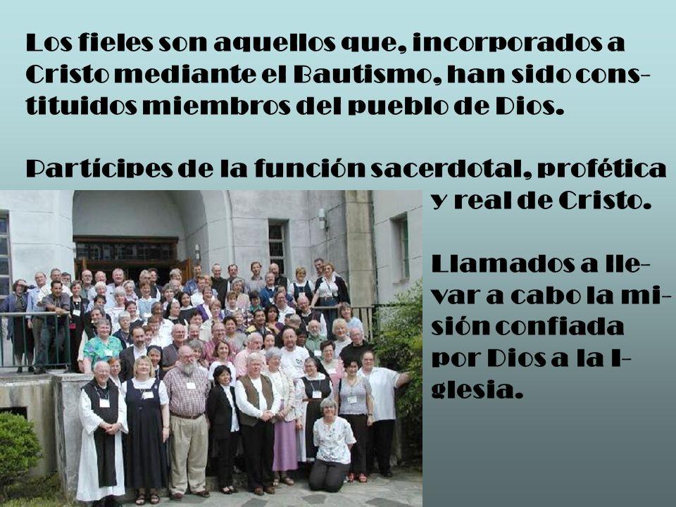Hay ministros sagrados, que han recibido el Sacramento del Orden y forman la jerarquía de la Iglesia.