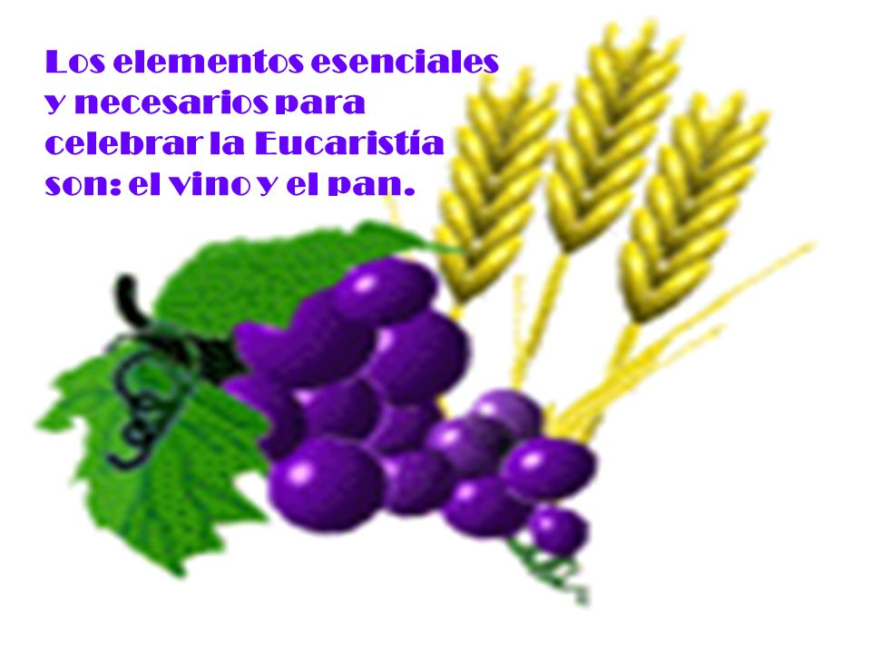Los elementos esenciales y necesarios para celebrar la Eucaristía son: el vino y el pan.