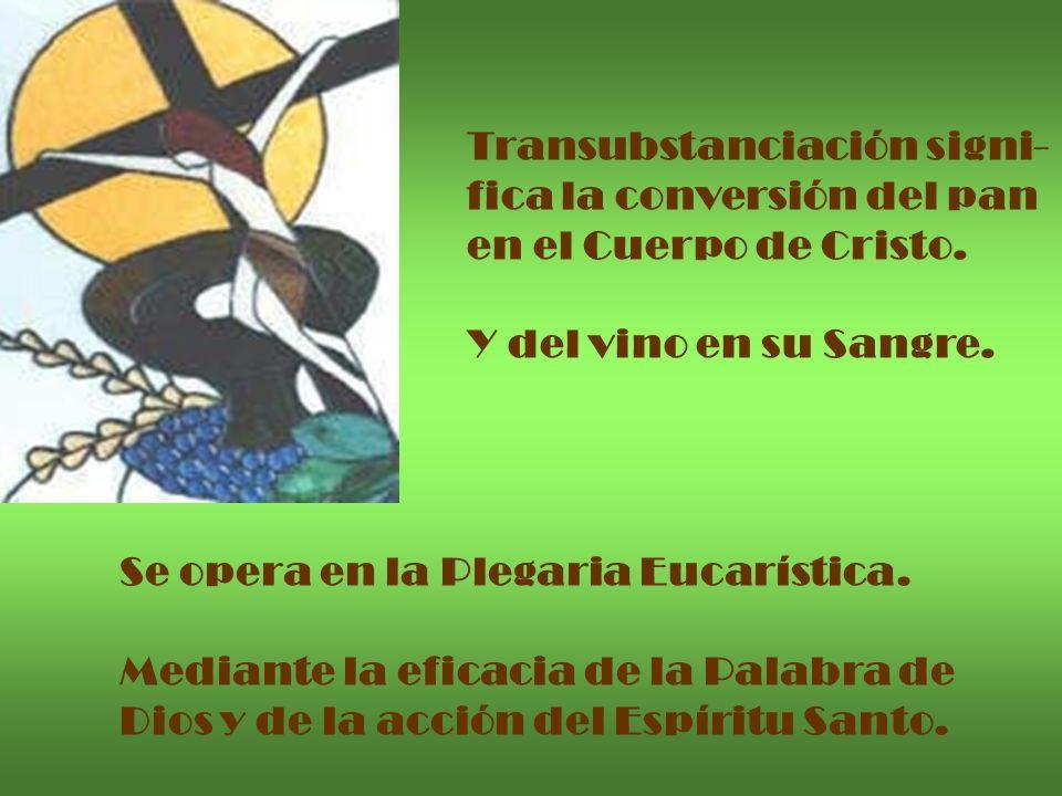 Transubstanciación signi- fica la conversión del pan en el Cuerpo de Cristo. Y del vino en su Sangre. Se opera en la Plegaria Eucarística. Mediante la
